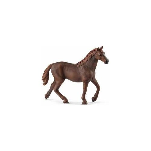English Thoroughbred Mare - 13855