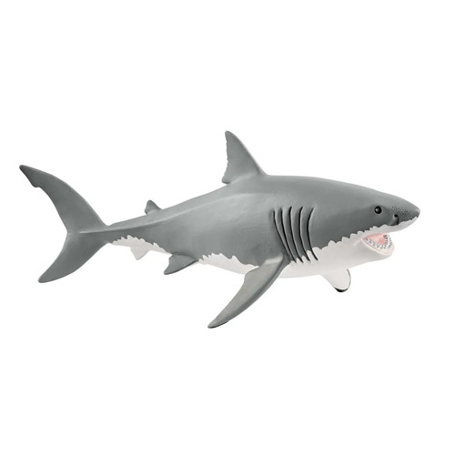Great White Shark - 14809